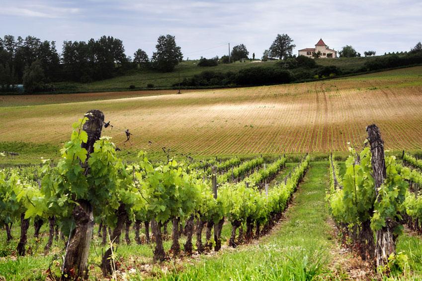 OCTOBER   Tuscany land of Chianti in Italy   italycreative.it