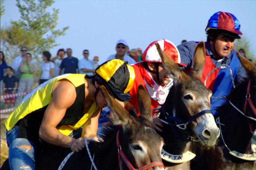 MARCH   Donkey palio Siena in Italy   italycreative.it