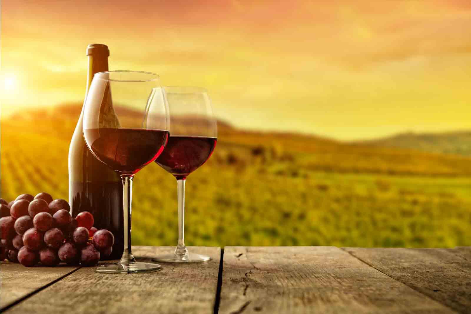 Wine and beauty Valpolicella Verona and Venice 9-day